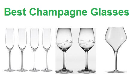 Top 15 Best Champagne Glasses – Ultimate Guide