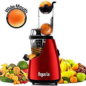 Argus Le B6000 Slow Masticating Juicer Extractor