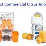 Top 15 Best Commercial Citrus Juicers in 2020