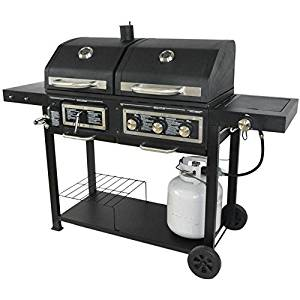 BLOSSOMZ Charcoal and Gas Grill
