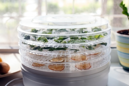 Top 10 Best Food Dehydrators in 2020