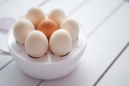 Top 15 Best Egg Cookers in 2020