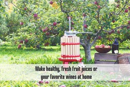 Top 15 Best Fruit Wine Presses - Guide & Reviews 2020